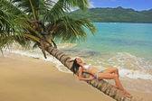 Young woman in bikini laying on leaning palm tree at Rincon beac — Stock Photo