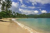 Playa rincon, península de samaná — Foto de Stock