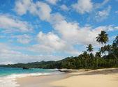 Rincon beach, Samana peninsula — Stock Photo