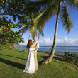 Groom and bride standing by palm tree — Stock Photo
