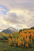 Gama de monte sneffels, colorado — Foto de Stock