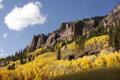 Scenic near Telluride, Uncompahgre National Forest, Colorado — Stock Photo