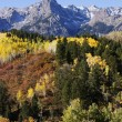 Stock Photo: Dallas Divide, Uncompahgre National Forest, Colorado