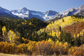 Dallas Divide, Uncompahgre National Forest, Colorado — Stock Photo