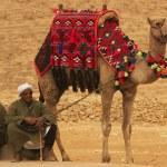 Bedouins resting near Pyramid of Khafre, Cairo, Egypt — Stock Photo #29706253