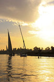 Felucca boats sailing on the Nile river at sunset, Luxor — Stock Photo