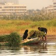 Stock fotografie: Local people getting into boat on Nile river, Luxor