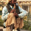 Snake charmer in the streets of New Delhi — Stock Photo #33209173