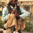 Stock Photo: Snake charmer in the streets of New Delhi