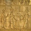 Ancient hieroglyphics on the wall of Kom Ombo temple — Stockfoto