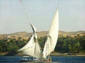 ナイル川でセーリング フェラッカ船 — ストック写真