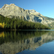 Emerald Lake, Yoho National Park, British Columbia, Canada — Stock Photo #38429383