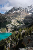 Lake O'Hara, Yoho National Park, British Columbia, Canada — Foto de Stock