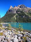 Lake O'Hara, Yoho National Park, British Columbia, Canada — Stock Photo