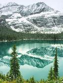 オハラ湖、ヨーホー国立公園、ブリティッシュ ・ コロンビア、カナダ — ストック写真