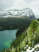 Lake o'hara, yoho national park, brits-columbia, canada — Stockfoto