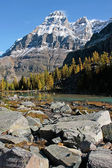 Mount Huber and Opabin Plateau, Yoho National Park, Canada — Stock fotografie