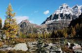 Mount Huber and Opabin Plateau, Yoho National Park, Canada — Stock Photo