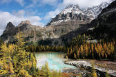 Mount Huber and Opabin Plateau, Yoho National Park, Canada — Foto Stock