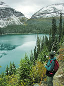Hiker admiring Lake O'Hara, Yoho National Park, Canada — Stock Photo