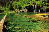 Hanging lake, Glenwood Canyon, Colorado — Stockfoto