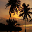 Tropical beach with palm trees at sunrise, Ang Thong National Ma — Stock Photo
