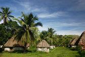 Traditional houses of Navala village, Viti Levu, Fiji — Stock Photo