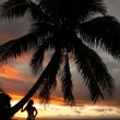 Silhouetted young woman by the palm tree on a beach, Vanua Levu — Stock Photo