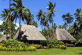 Traditional bure with thatched roof, Vanua Levu island, Fiji — Stock Photo