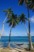 Amaca colorato tra palme, isola ofu, gruppo vavau, a — Foto Stock