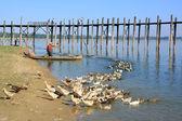 Local man in a boat near U Bein Bridge, Amarapura, Myanmar — Stok fotoğraf