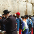 Praying at Western wall, Jerusalem — 图库照片
