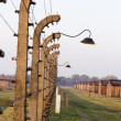 OSWIECIM, POLAND - OCTOBER 22: Electric fense in sunset in Auschwitz II, a former Nazi extermination camp on October 22, 2012 in Oswiecim, Poland. It was the biggest nazi concentration camp in Europe — Stockfoto