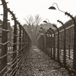 Auschwitz camp, Poland — Stock Photo #14072870