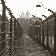 Stock Photo: Auschwitz camp, Poland