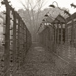 OSWIECIM, POLAND - OCTOBER 22: Electric fense in Auschwitz I, a former Nazi extermination camp on October 22, 2012 in Oswiecim, Poland. It was the biggest nazi concentration camp in Europe. — Stock Photo