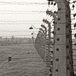 Stock Photo: Old style photo of Auschwitz camp