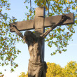 ストック写真: Holy cross in cemetery, Budapest