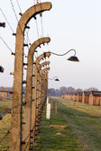 OSWIECIM, POLAND - OCTOBER 22: Electric fense in sunset in Auschwitz II, a former Nazi extermination camp on October 22, 2012 in Oswiecim, Poland. It was the biggest nazi concentration camp in Europe — Stock Photo