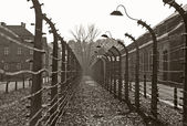 Auschwitz camp, Poland — Stock Photo