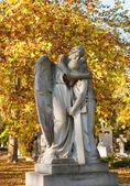 скульптуры ангелов на кладбище, будапешт — Стоковое фото
