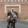 On a donkey in the Moroccan city — Stock Photo