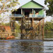 Stock Photo: House on Mekong River, Vietnam