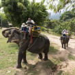 Unidentified tourists riding elephant in Samui jungle Thailand — Foto de Stock