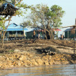Stock Photo: Village on Mekong River, Vietnam