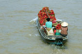 Unidentified people are using a motorboat on Mekong river, southern Vietnam — Stock Photo