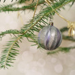 New Year blurred background, Christmas tree branch with silver b — Stock Photo #18036663