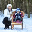 Young mother and child on a winter walk in the park and ride on — Stock Photo