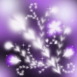 Festive beautiful spring abstract background with purple flowers — Stock Photo