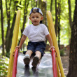 Kid goes down on child slides on the playground in the park — Stock Photo